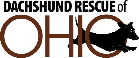 Dachshund Rescue of Ohio